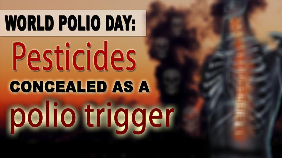 Pesticides and polio