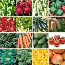 Vegetable gardening guide in Urdu