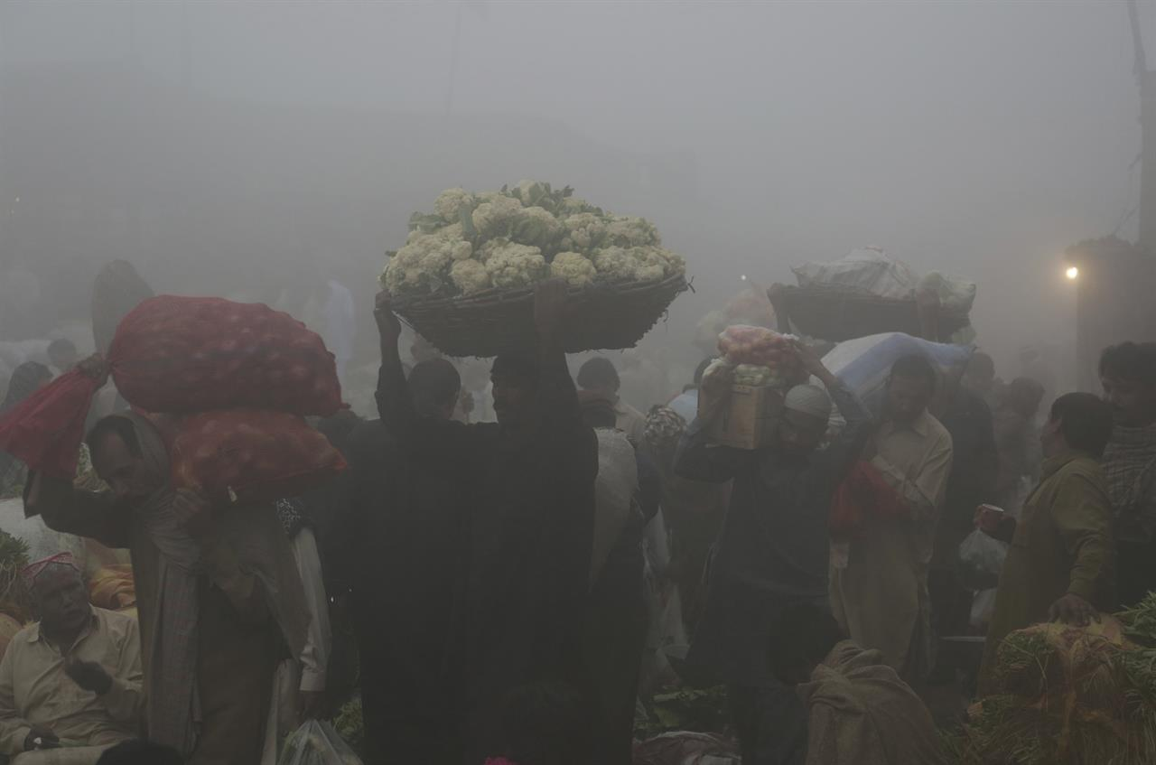 FAO report analyzes the causes of smog in Punjab focusing on agriculture