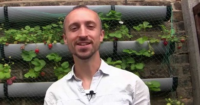 Feeding Your Plants for Free – How to Make Fertilizer for Your Vegetable Garden