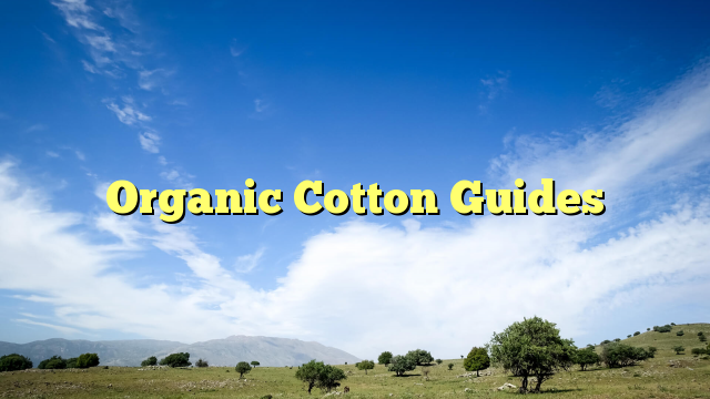Organic Cotton Guides