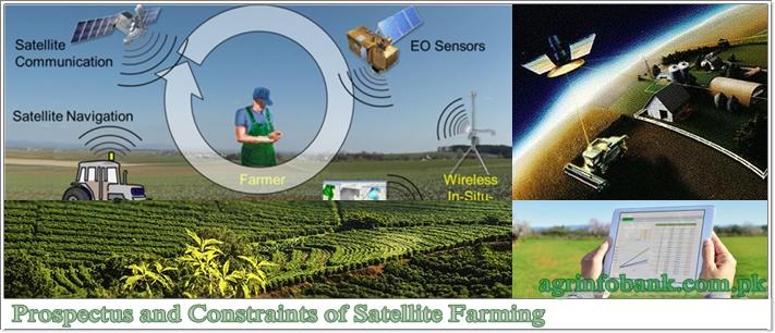 Prospectus and Constraints of Satellite Farming