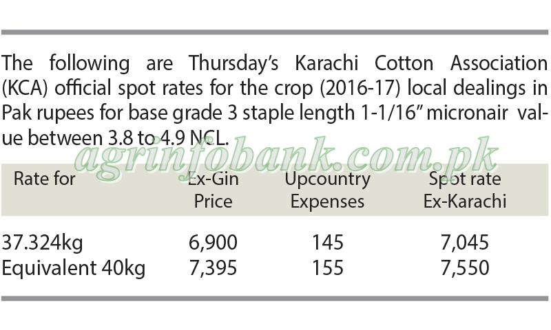 Cotton prices stable on strong demand