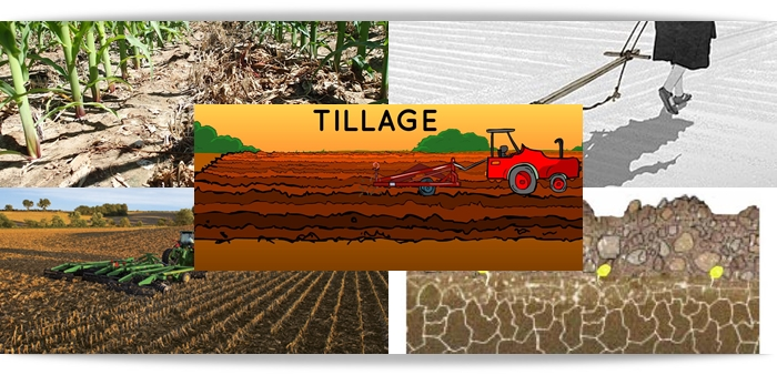 Modern concepts of tillage