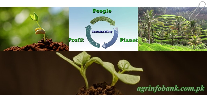 What is sustainable agriculture?