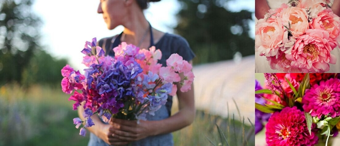 10 flowers to pick in July