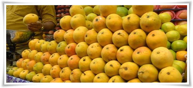 Mango growers feel the heat as Pakistan tackles climate change