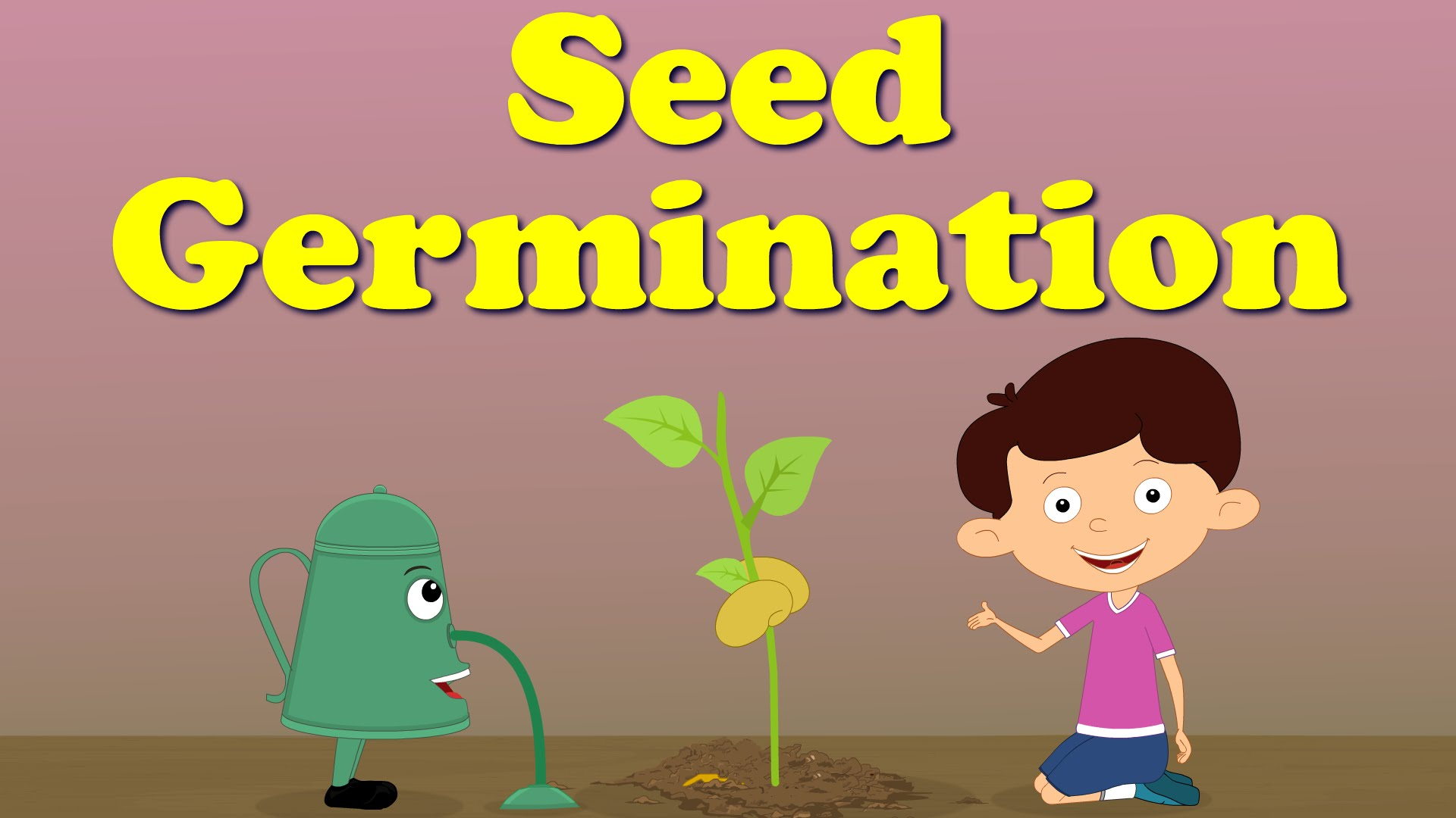 Easiest way to germinate any seeds