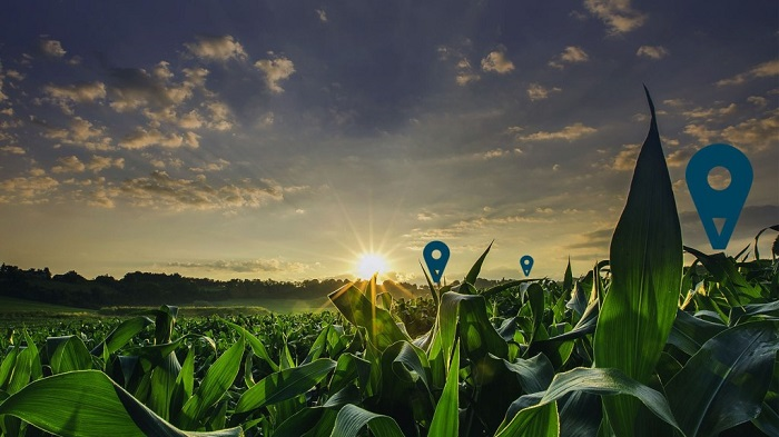 Data turns into money crop for large agriculture