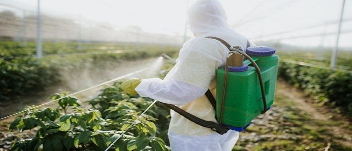 EU Just Banned this Popular Fungicide Over Safety Concerns