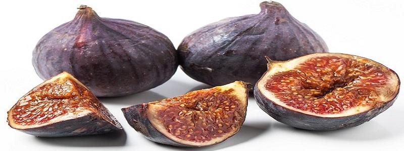 انجیر Anjeer (Fig) Cultivation guide in Urdu