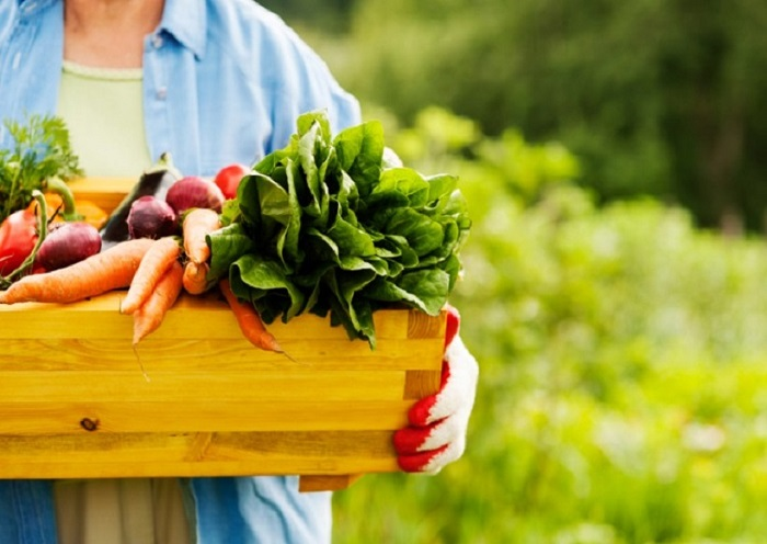 A study of Buyers' and Sellers' Perception of Organic Foods in Pakistan: Towards a More Effective Marketing Mix