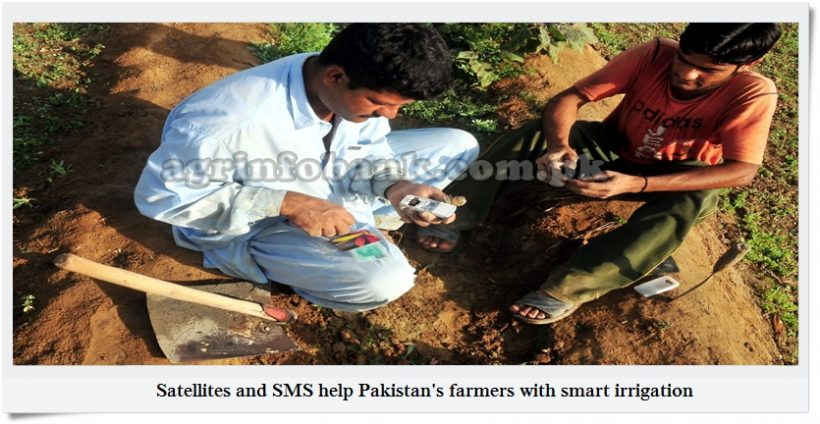 Satellites and SMS help Pakistan's farmers with smart irrigation