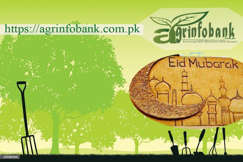 Eid Mubarak from agrinfobank.com.pk Team