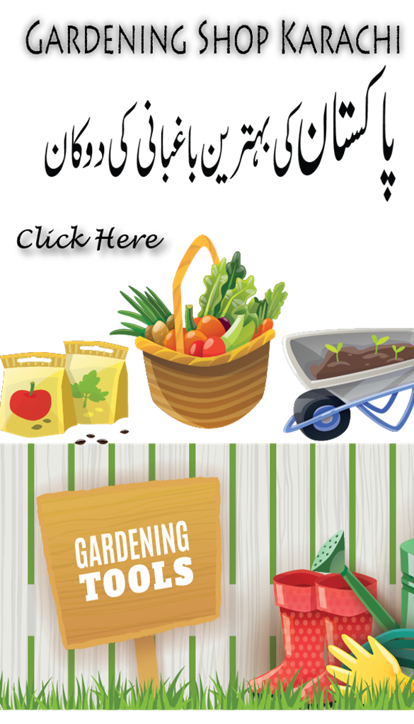 Top 5 online gardening store in Pakistan