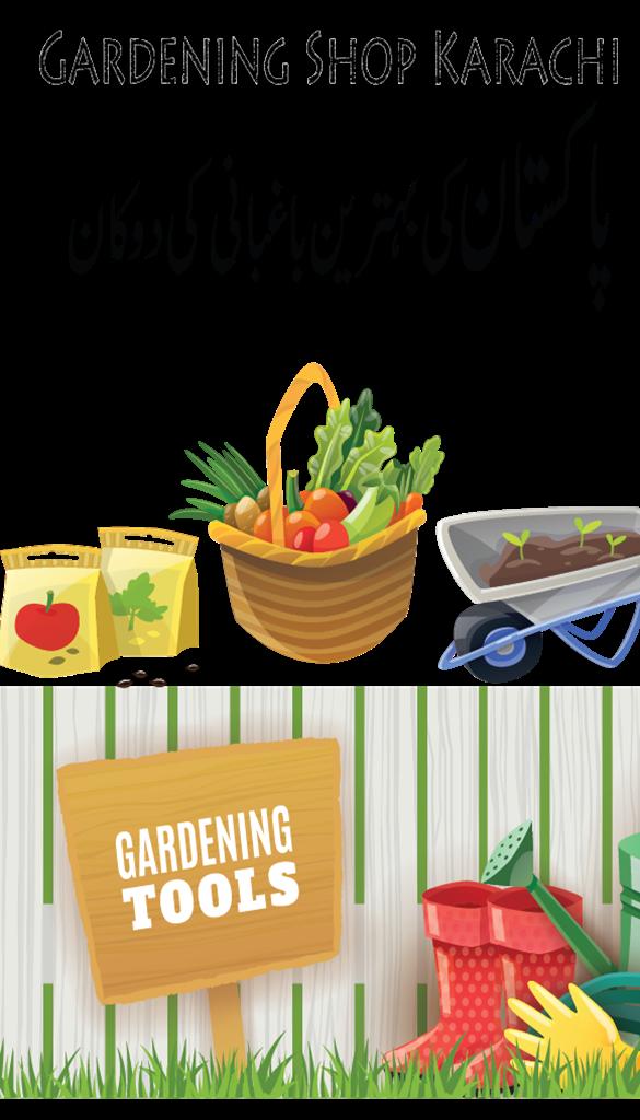 Top 5 online gardening store in Pakistan